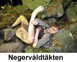svenskt porn swedish porn stream
